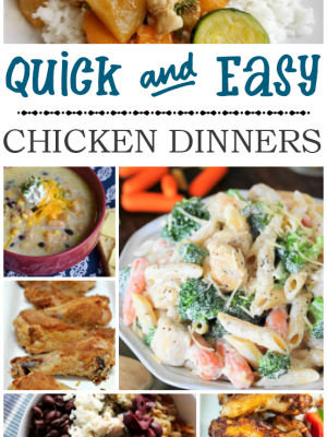 Get your menu planning tackled for the week with these easy chicken dinner ideas!